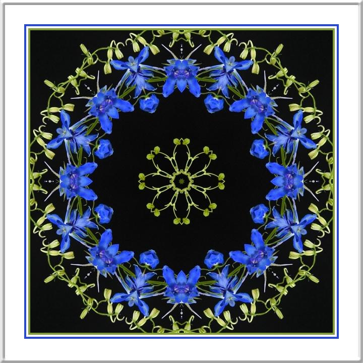 Kaleidoscope_13040_2