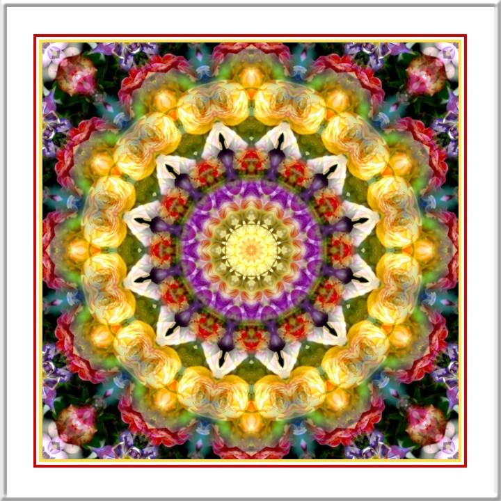 Kaleidoscope_17831