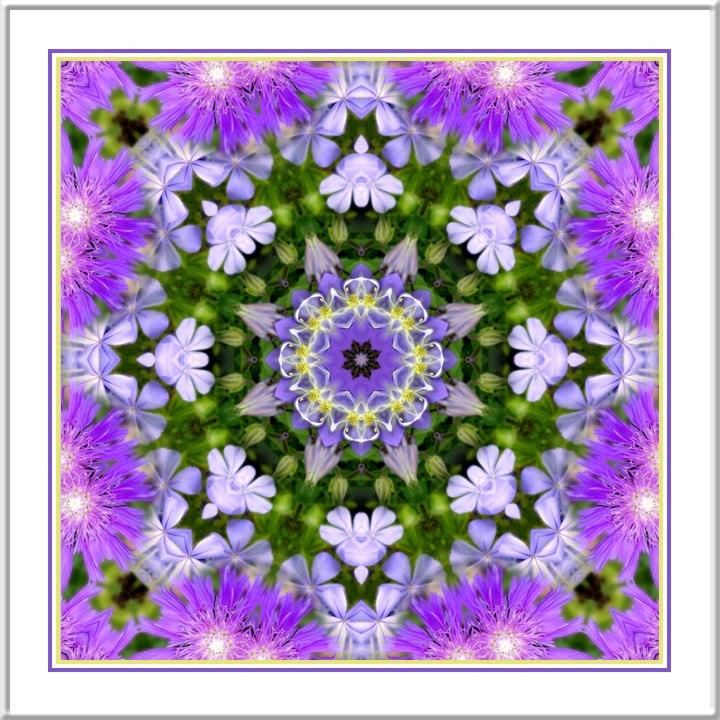 Kaleidoscope_17835