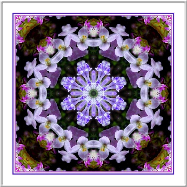 Kaleidoscope_17866