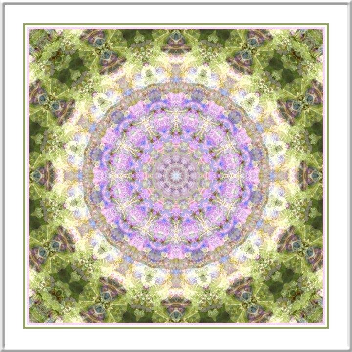 Kaleidoscope_19785
